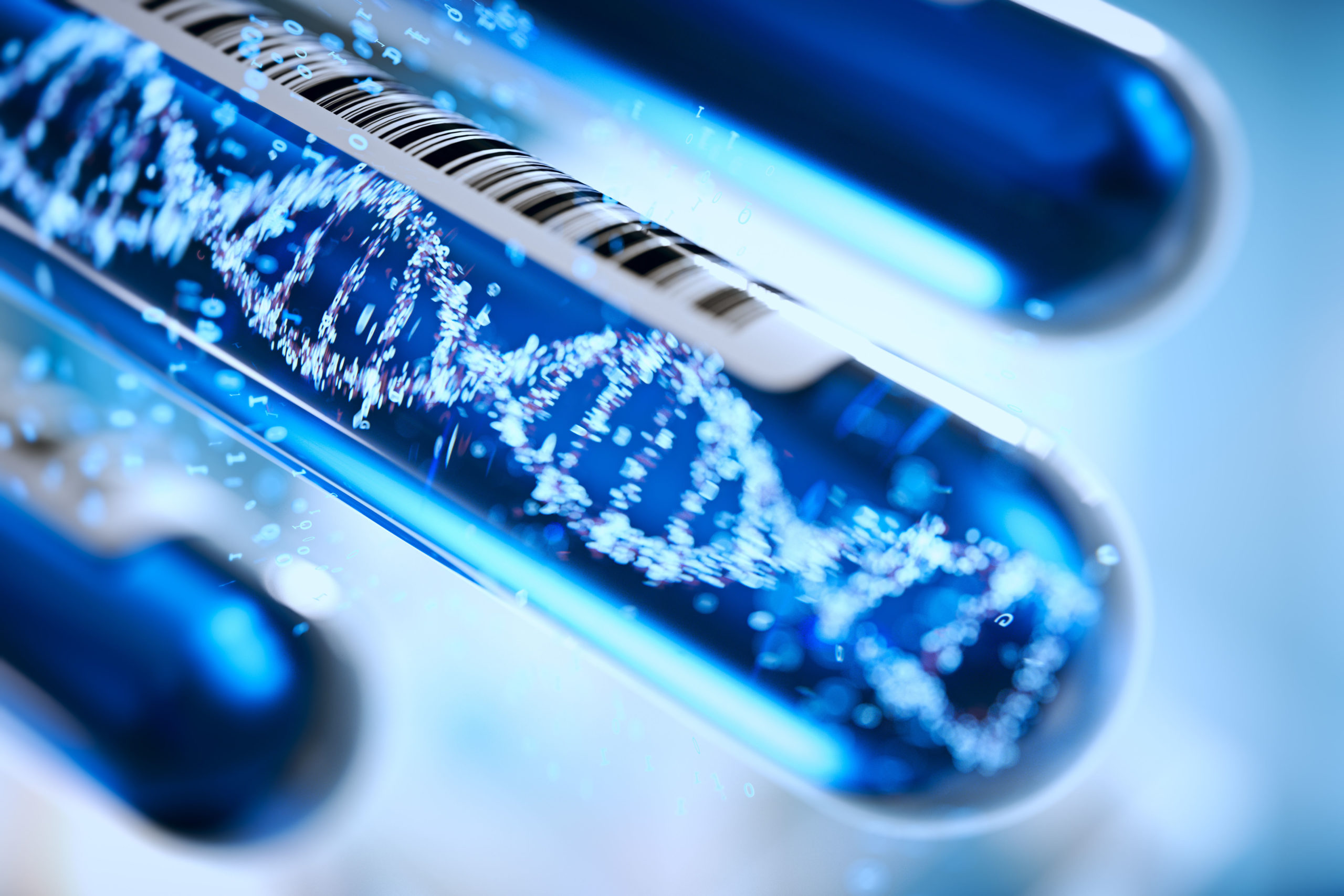 immigration DNA testing price